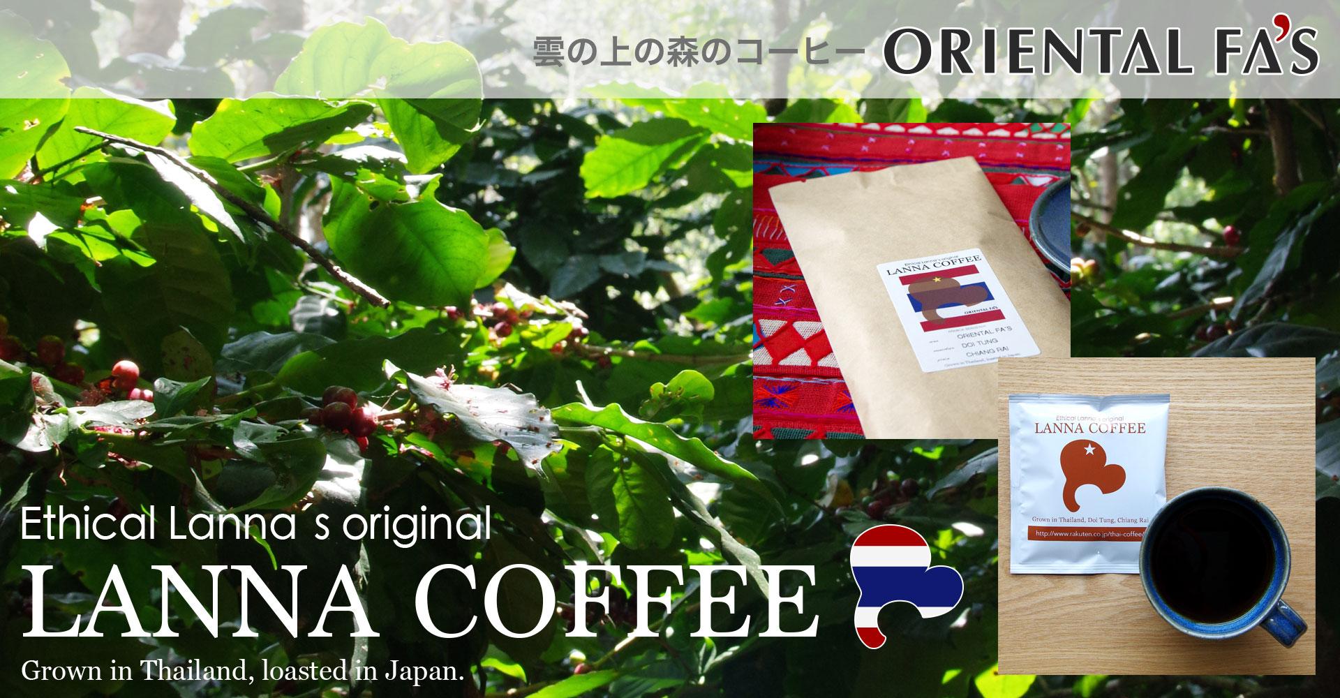 タイ北部原産のコーヒー豆